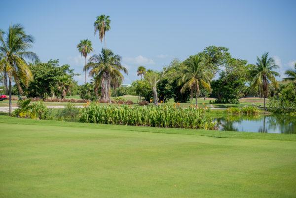 Key West Golf Course Pond