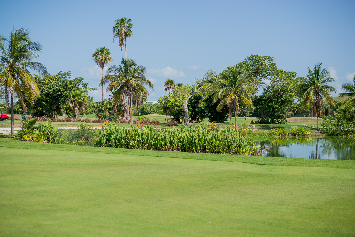 Key West Golf Course Pond