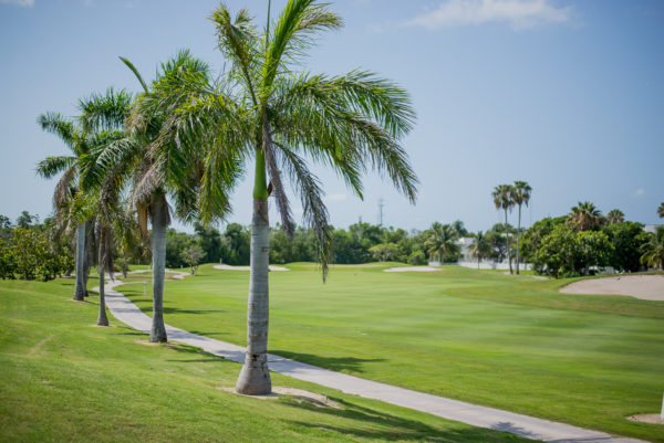 Key West Golf Course fairway and palm trees